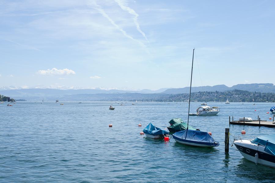 Пионы в Цюрихе